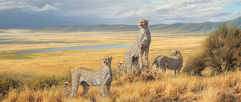 kilimanjaro trek and safari