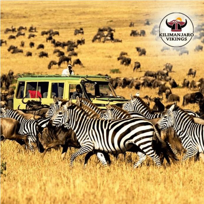 風景と野生生物の多様性