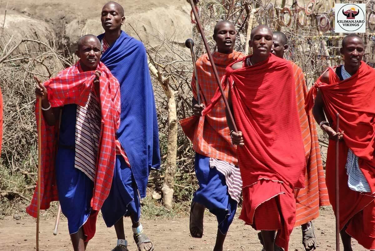 部族の生活を見る