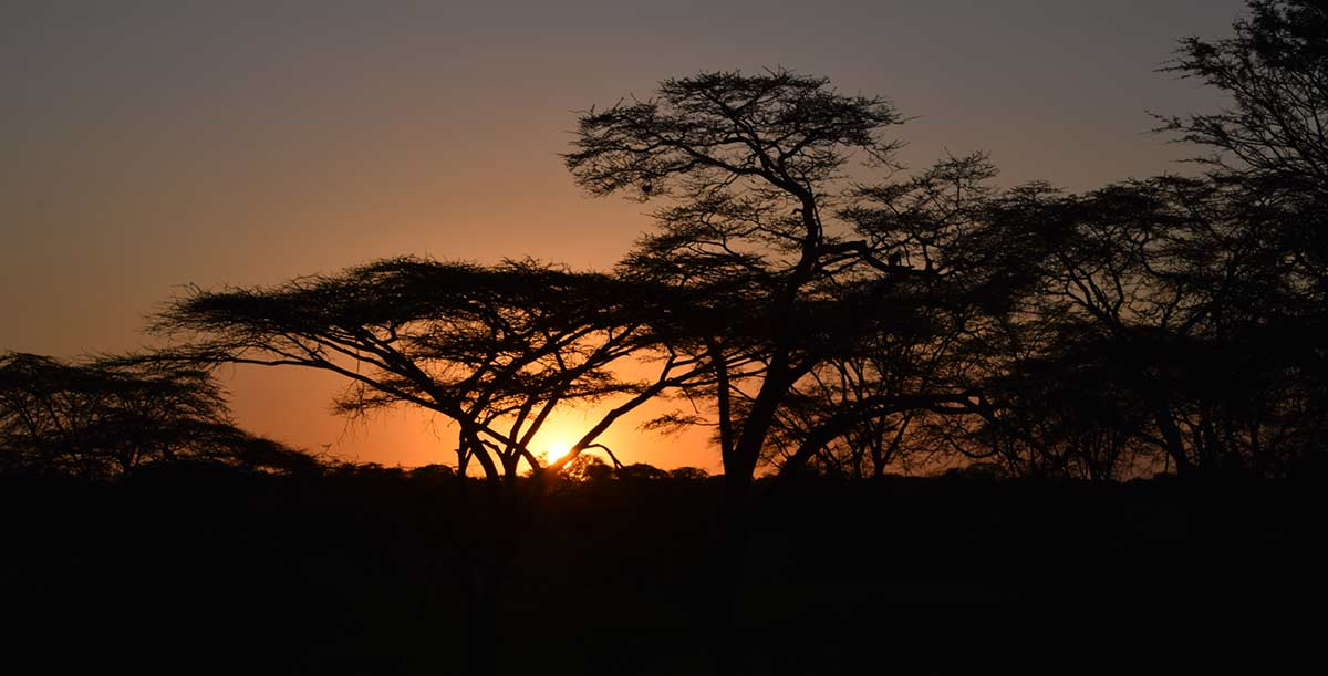 Why is the Serengeti National Park considered as a top tourist attraction?