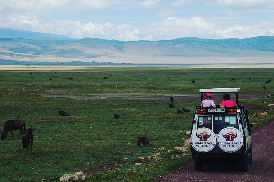 7 Reasons Why The Serengeti Should Visit at Least Once in Your Life