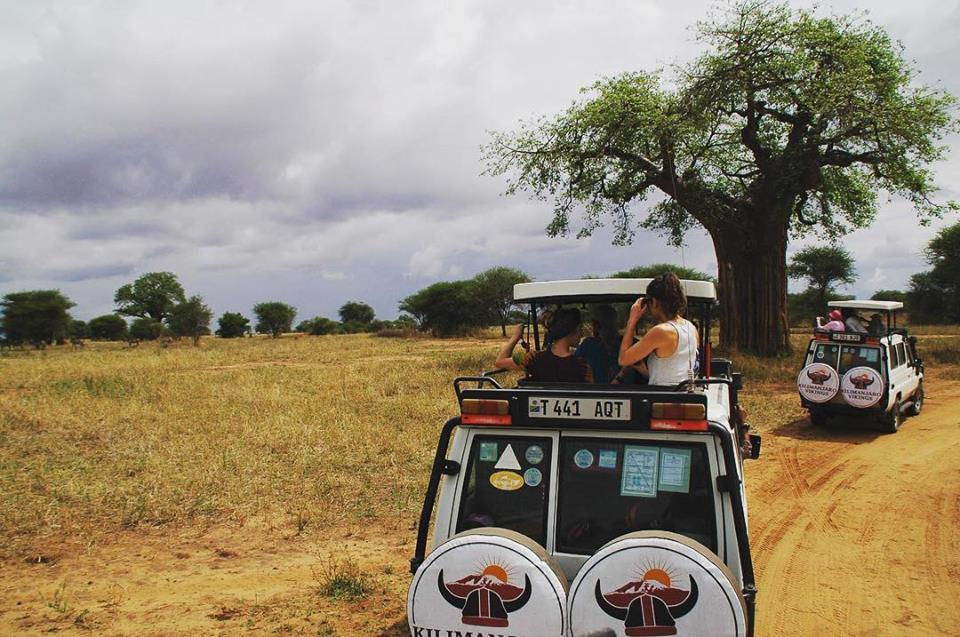 Serengeti national park tour packages