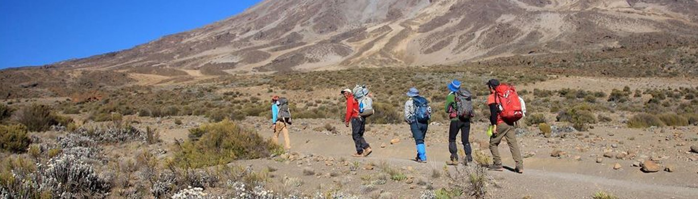 Want To Climb A Mountain Without Actually Climbing? Head To Kilimanjaro