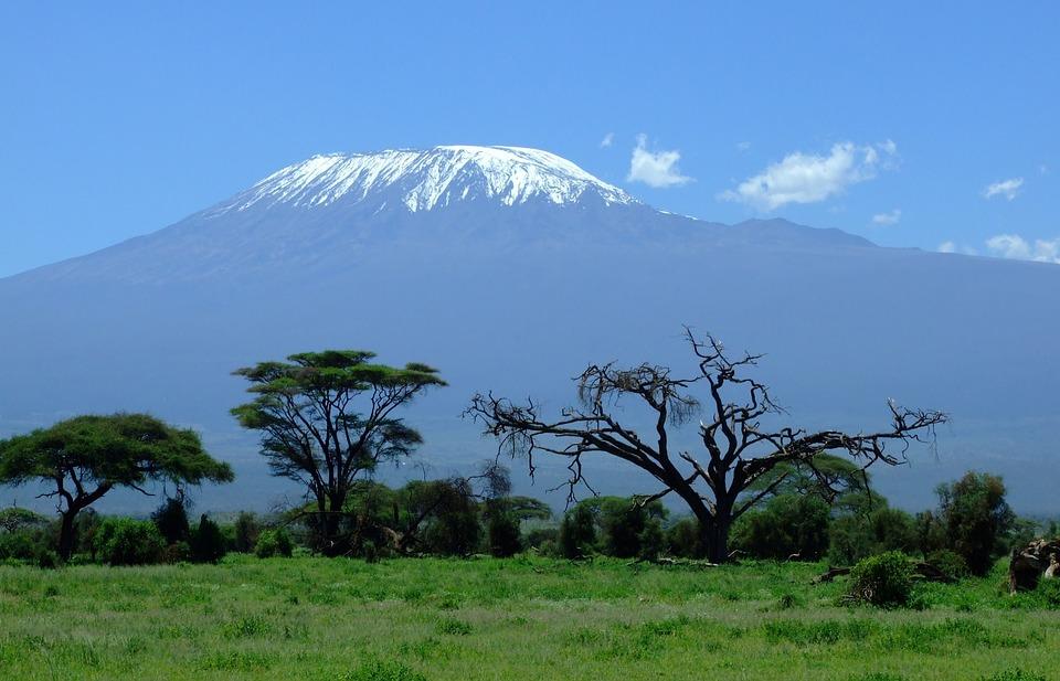 Planning to go on the Kilimanjaro Safari tour