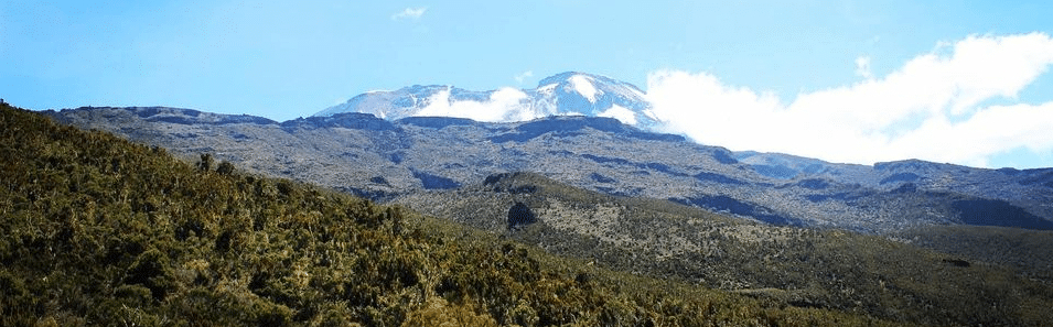 Plan A Kilimanjaro Trekking Tour for The Ultimate Thrill & Excitement