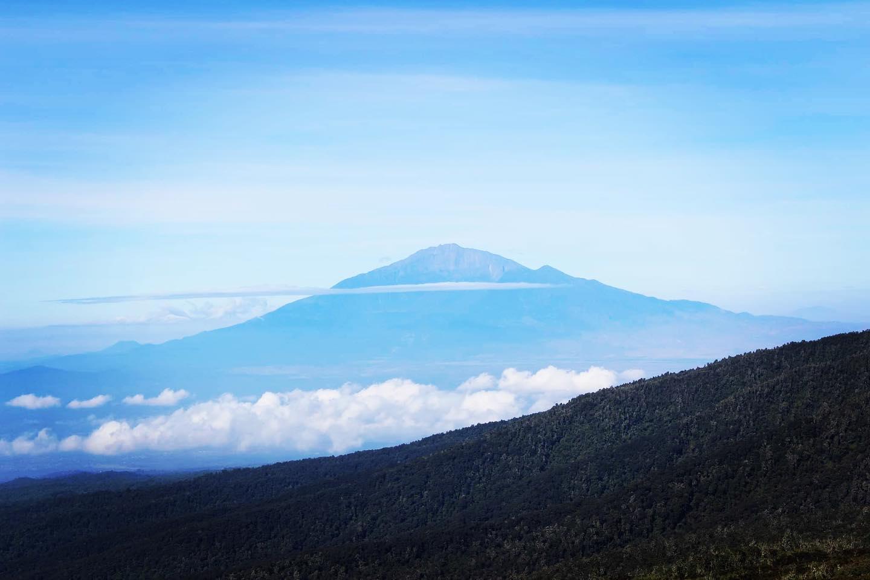 Kilimanjaro day hiking plans