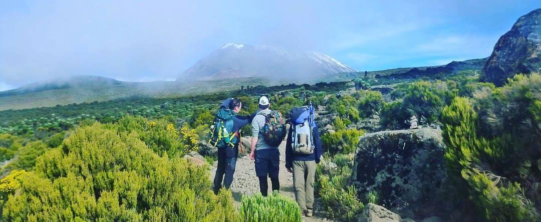 Tanzania Safari Tours and Kilimanjaro Climb!