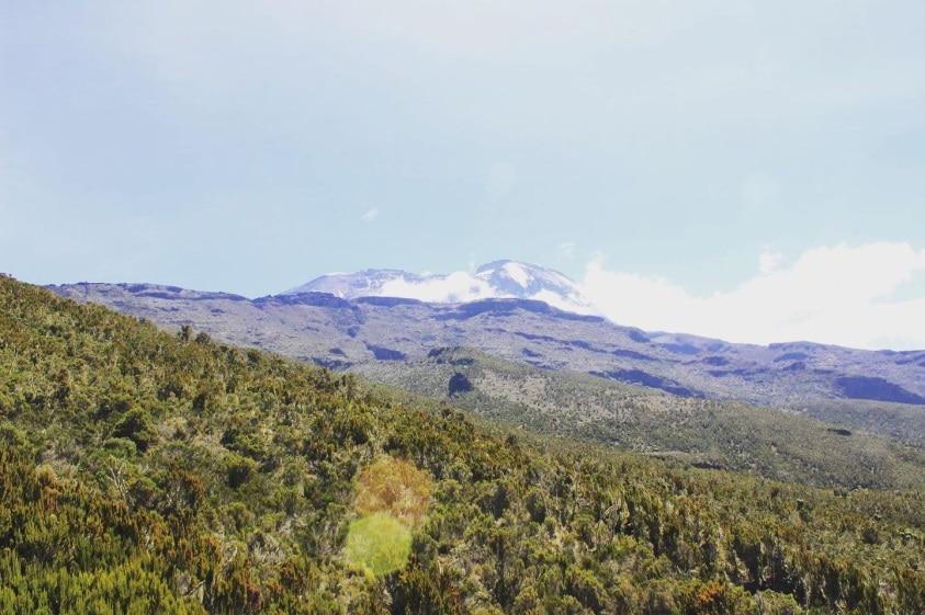 Kilimanjaro Vikings